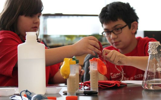 Become a scientist - conduct an experiment and collect your own data.